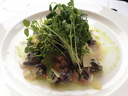 Escargot Vol au Vent - Saute of wild mushrooms, escargot and shallots in a cognac cream topped with arugula and hard cheese shavings