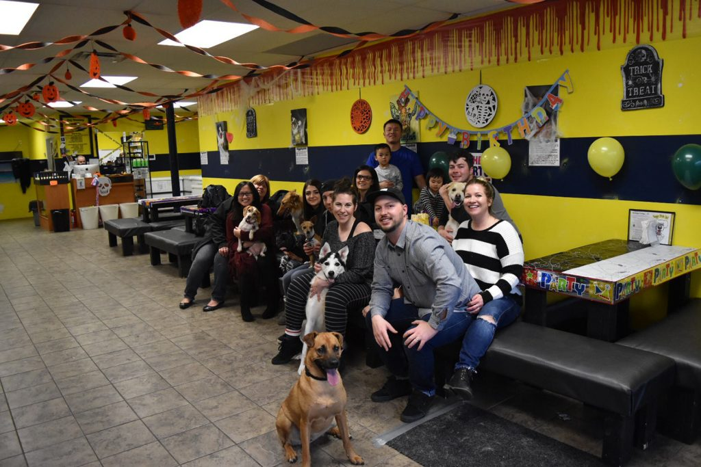 Dog Restaurant Doggy Style Deli Edmonton