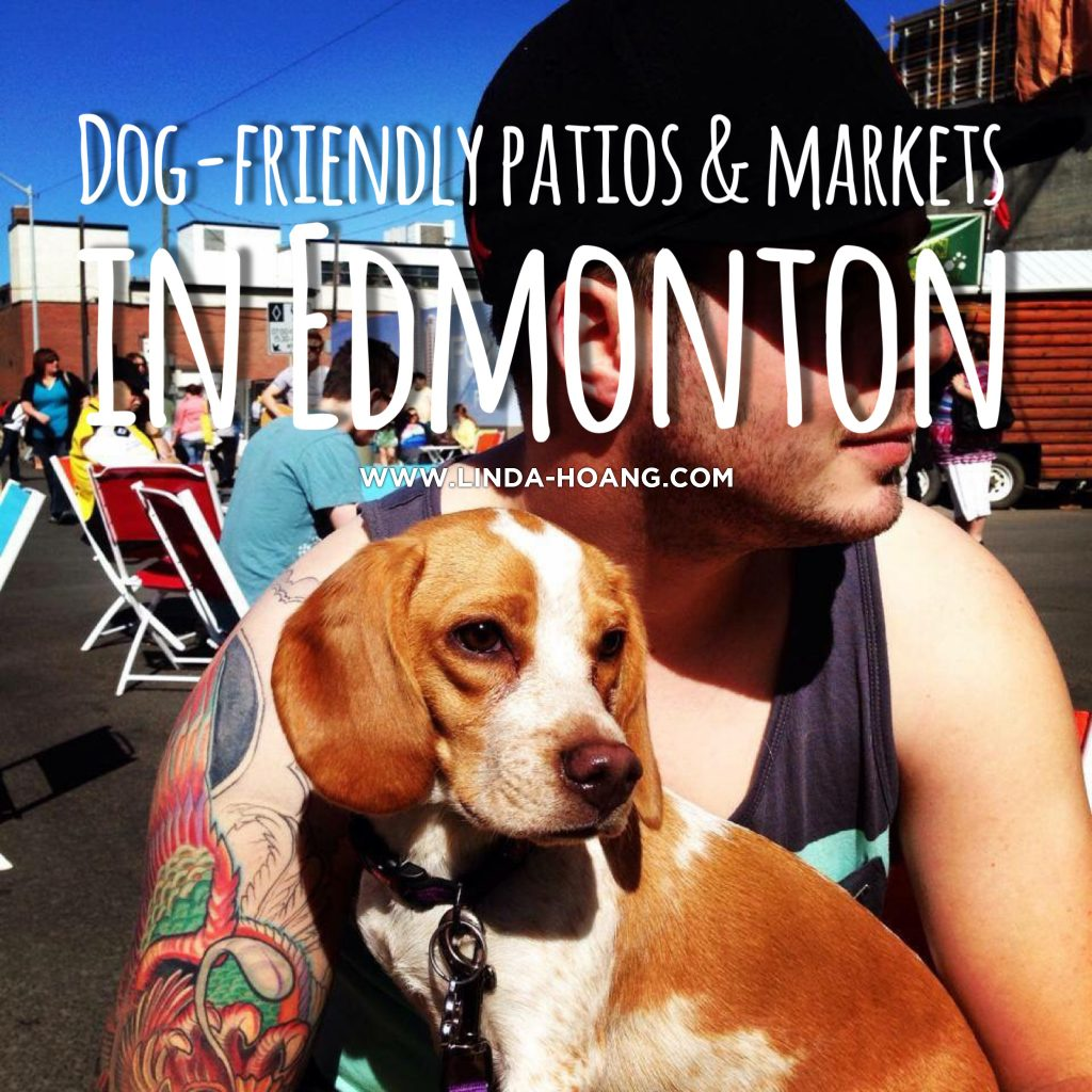 Dog Friendly Patio Markets Edmonton Restaurants
