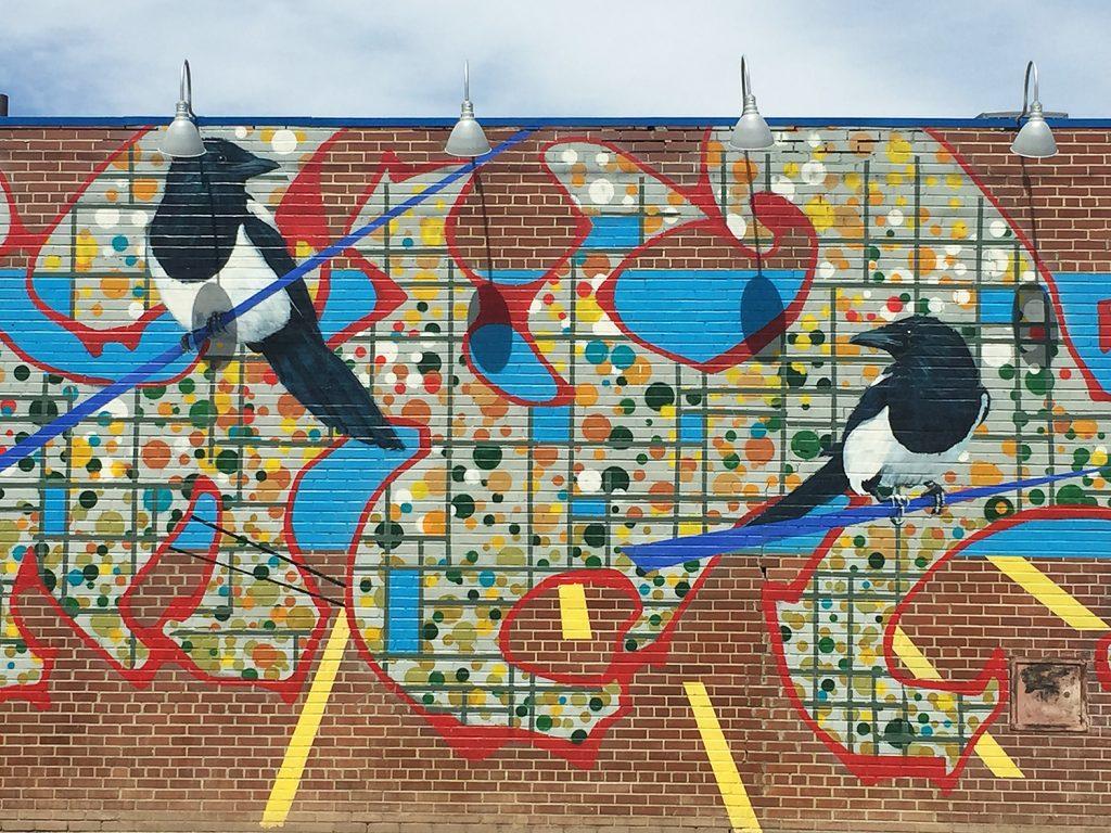 Instagrammable Walls of Edmonton - Downtown - Bird Mural