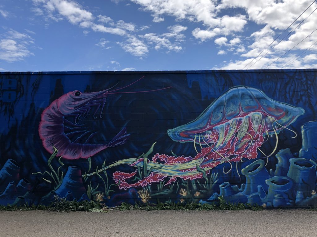 Whyte Ave Old Strathcona Instagrammable Walls Edmonton