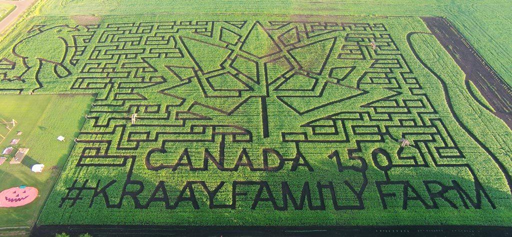 Kraay Family Farm Canada 150 Lacombe