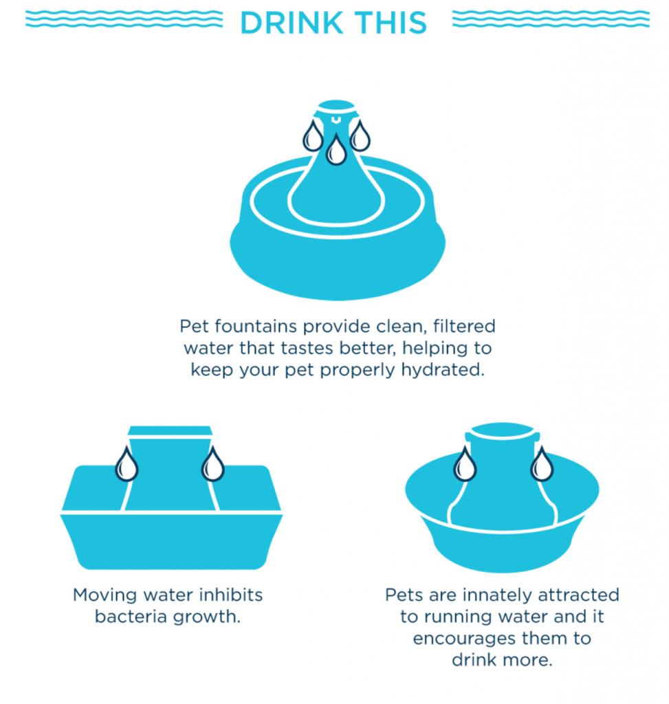 PetSafe Canada - Pet Water Fountain