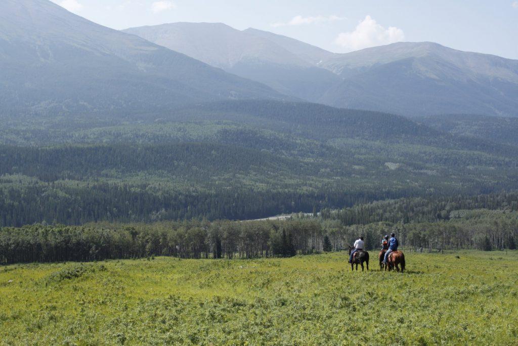 U Bar Ranch Grande Cache Horseback Riding Travel Explore Alberta