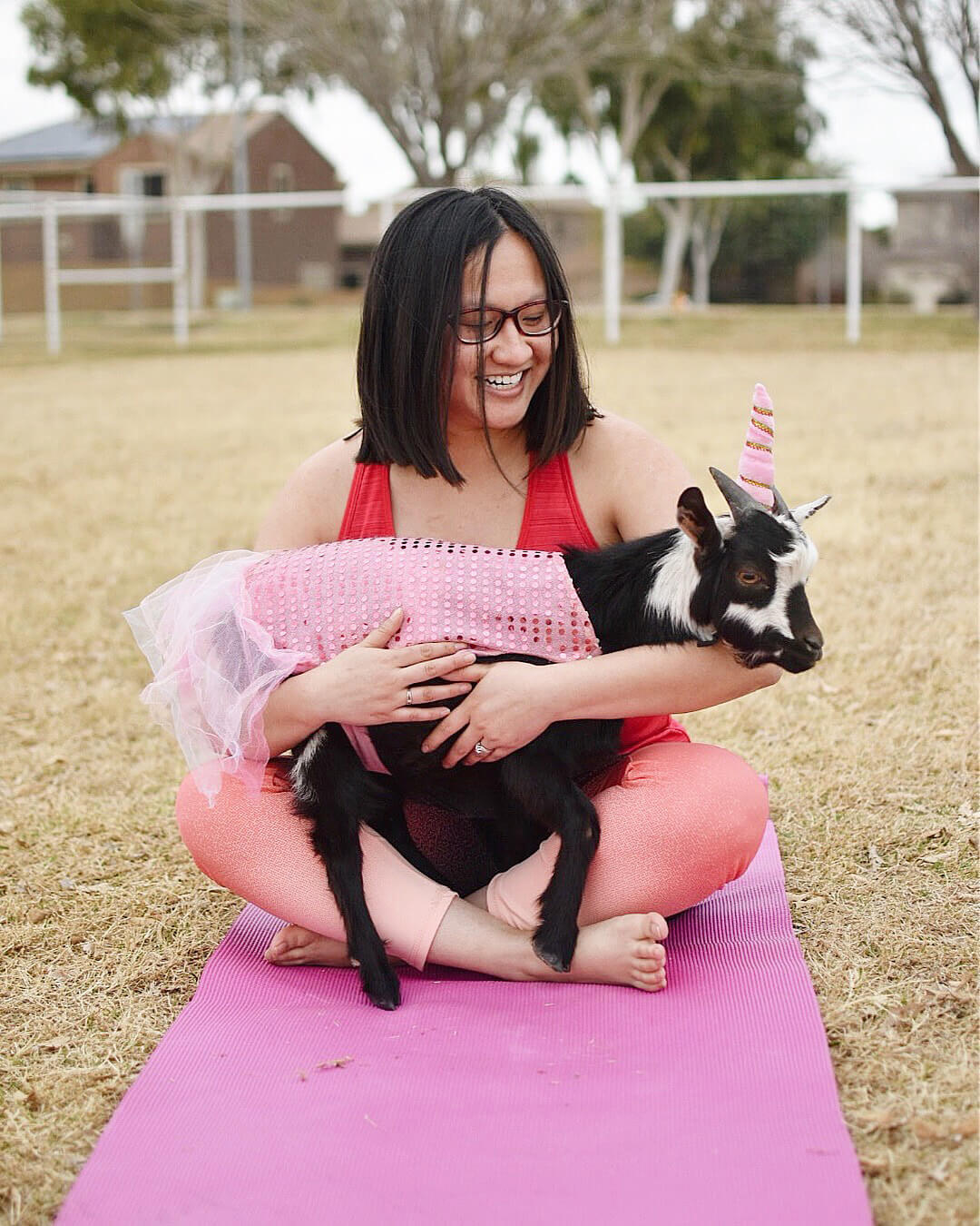 Goat Yoga Arizona Visit Mesa Gilbert Things To Do Travel Experiences