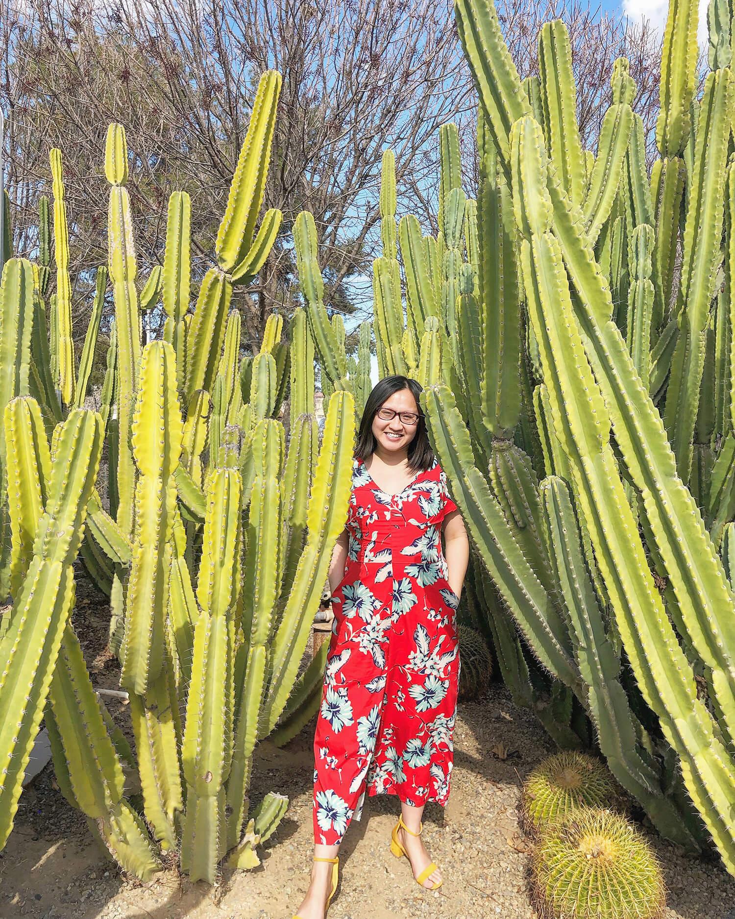 Instagrammable Walls of Mesa Arizona Murals Travel Visit Gilbert Agritopia