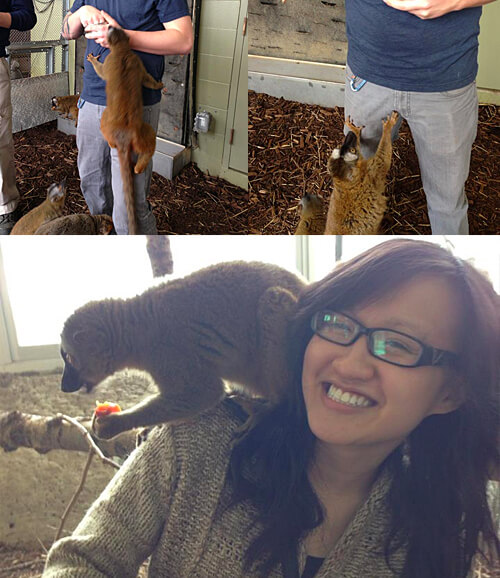 The lemurs were very touchy! So fun.