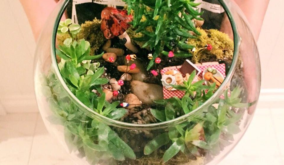 Bid On My Terrarium At The 2015 Edmonton Home Garden Show Linda