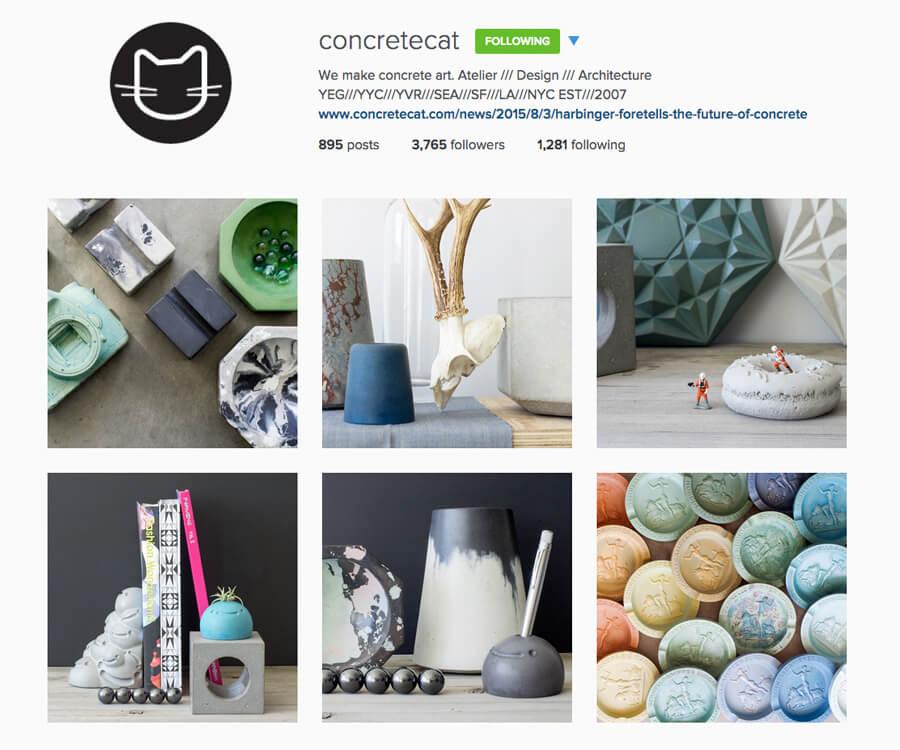 Edmonton Instagram Users - concretecat