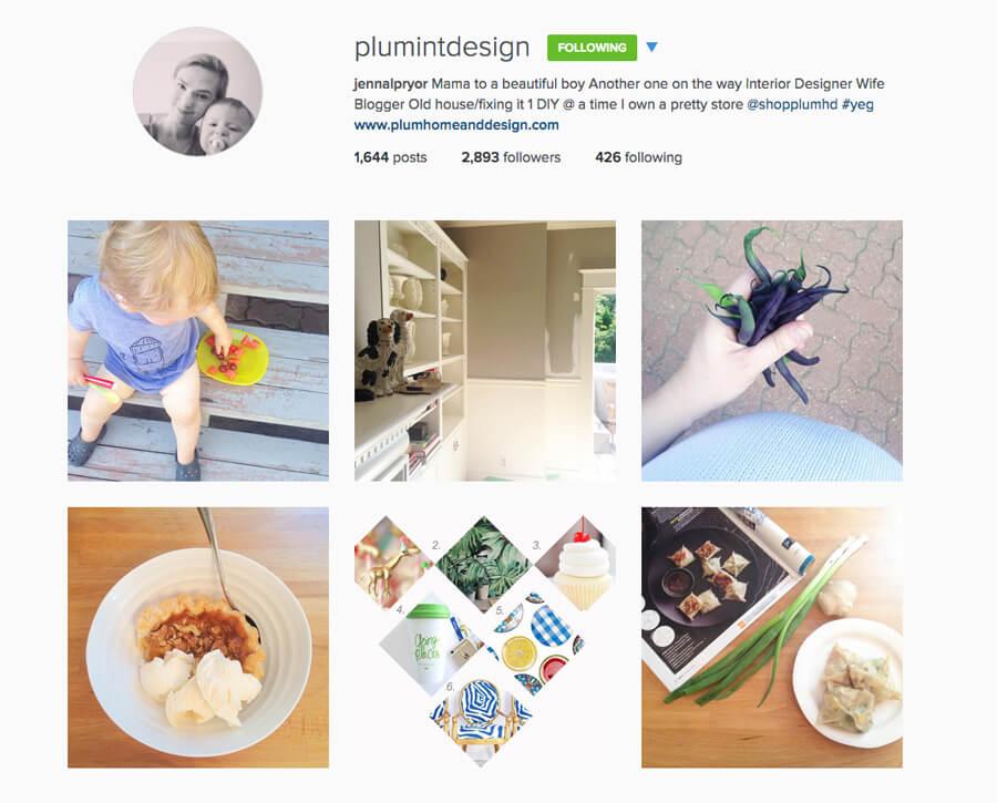 Edmonton Instagram Users - plumintdesign