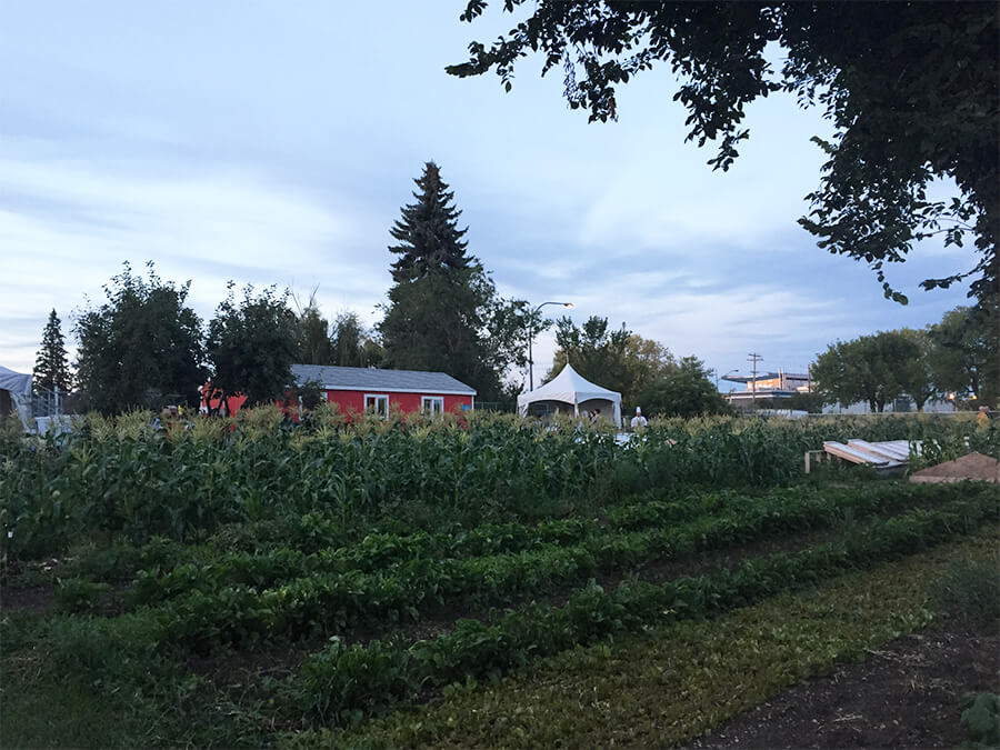 Edmonton Northlands Urban Farm – Farm Dinner – Alberta Farm Days