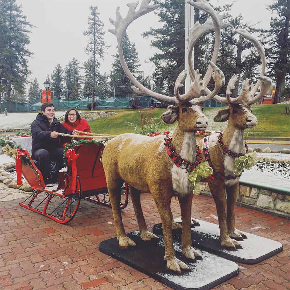 Christmas in November Reindeer