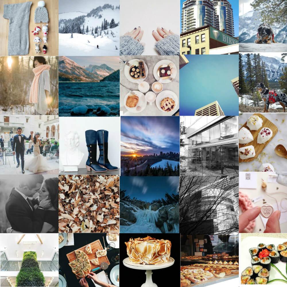 Edmonton Top Instagram Users Social MEdia