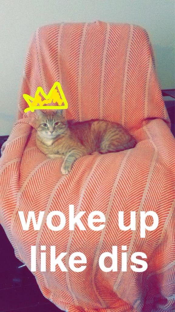 Loki Woke Up Like This