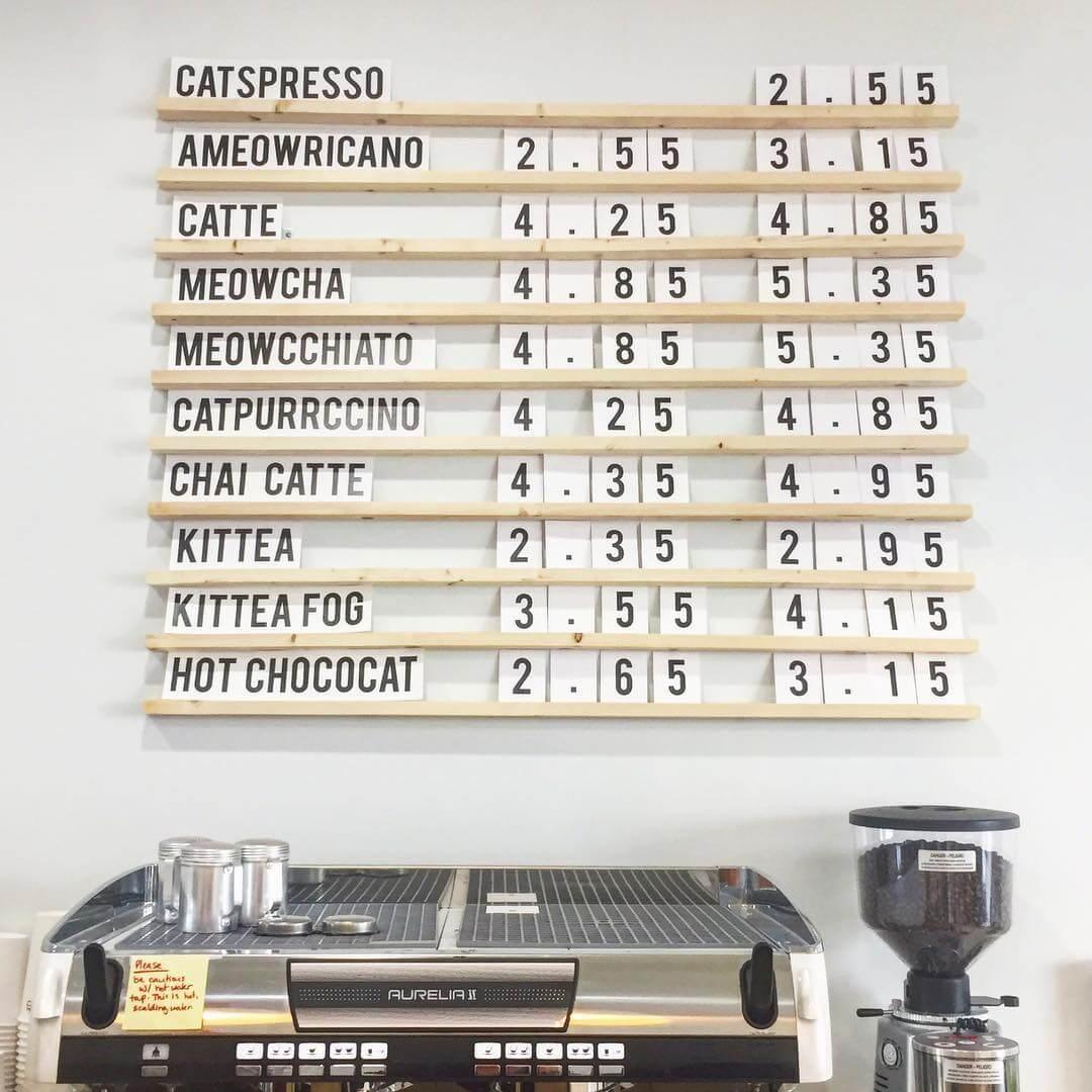 Cat Cafe Edmonton Cat Puns Whyte Ave