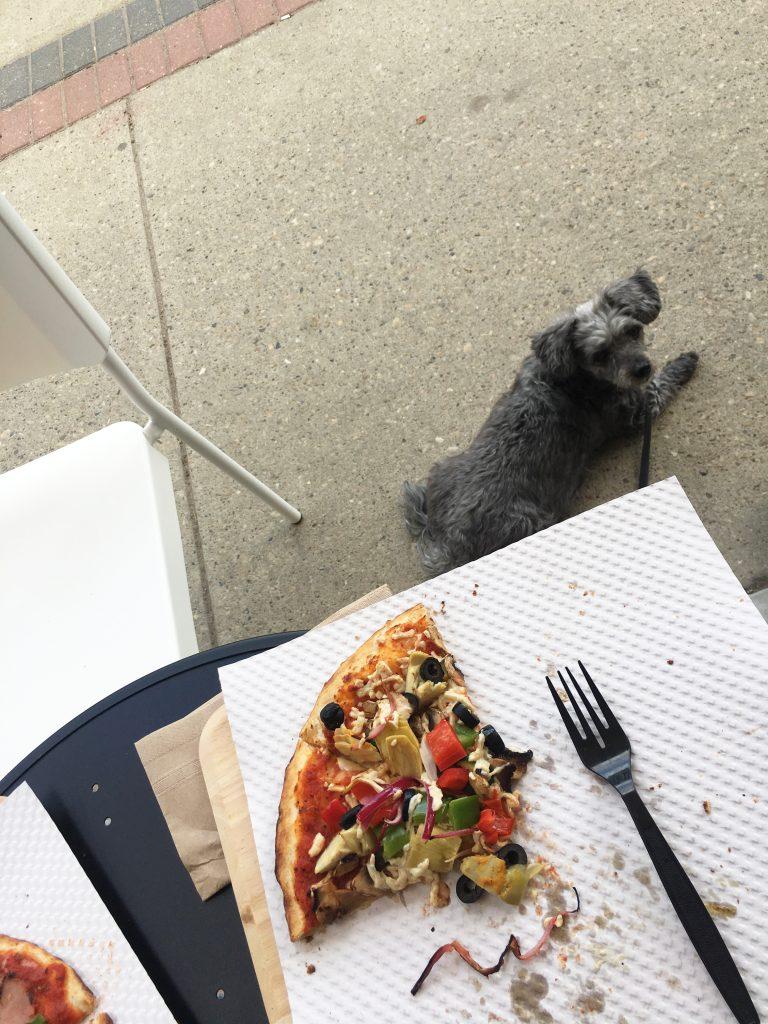 Dog Friendly Urbano Pizza
