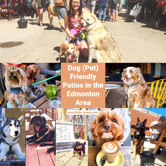 Edmonton Area Dog Friendly Pet Friendly Patios Restaurants Cafes