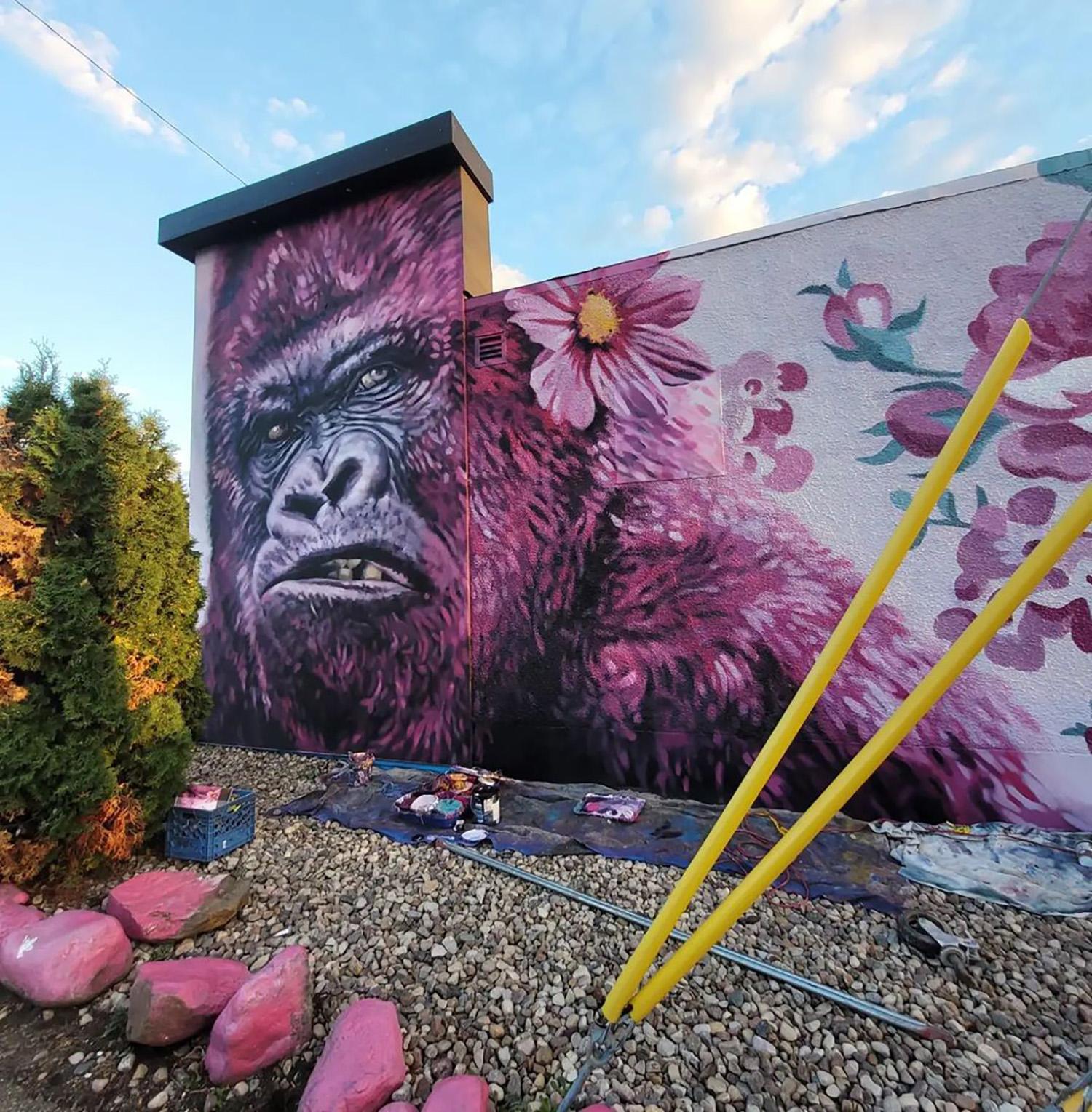 Instagrammable Walls of Edmonton - Explore Edmonton - Murals - Walls - South Edmonton - Parkallen - Pink Gorilla - Lacey jane and Layla Folkmann
