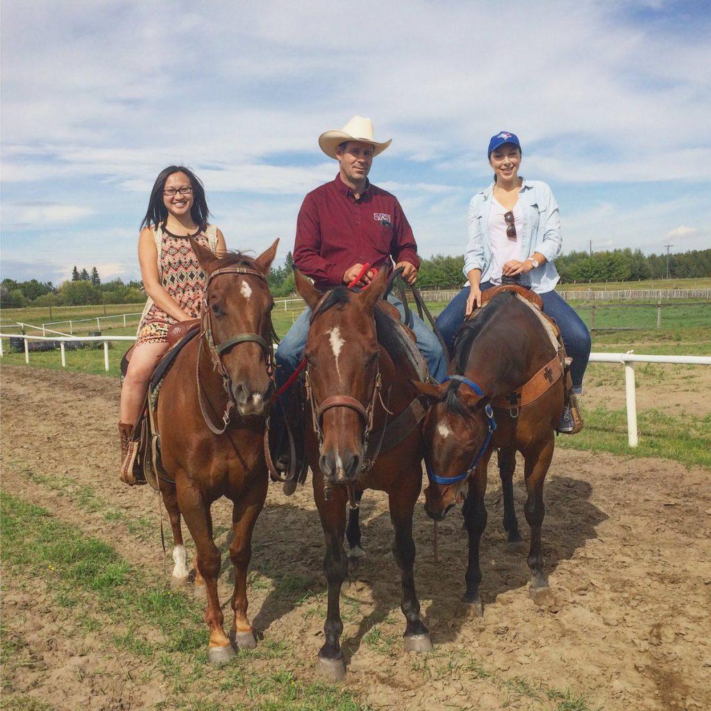 Flying Cross Ranch Horses Lacombe County Alberta