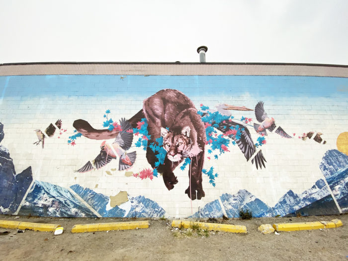 Instagrammable Walls of Calgary - Murals - YYC Beltline Urban Mural Project BUMP Festival - Van Charles