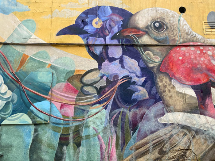 Instagrammable Walls of Calgary - Murals - YYC - Katie Green