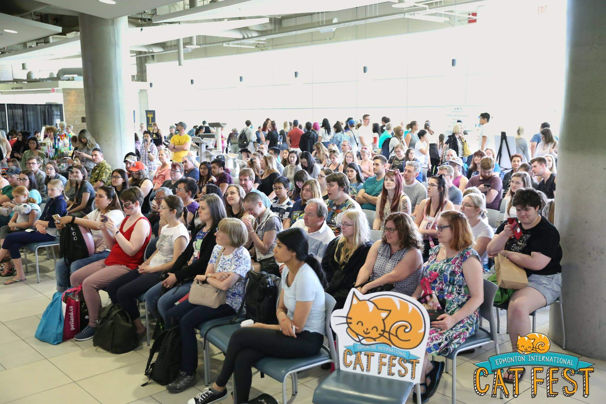 Edmonton International Cat Festival TELUS Give Where We Live