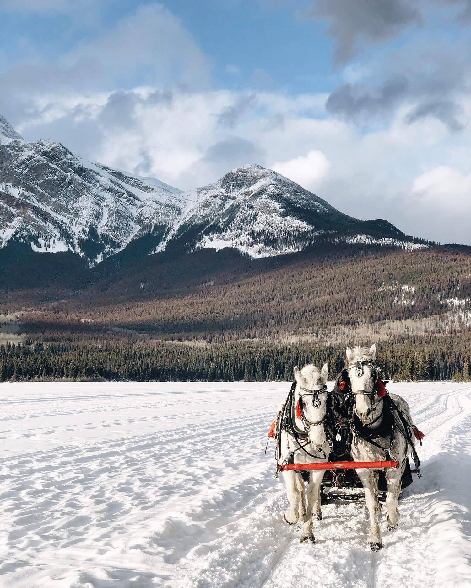 Pyramid Lake Horse Drawn Sleigh Rides Tourism Jasper Explore Alberta Canada