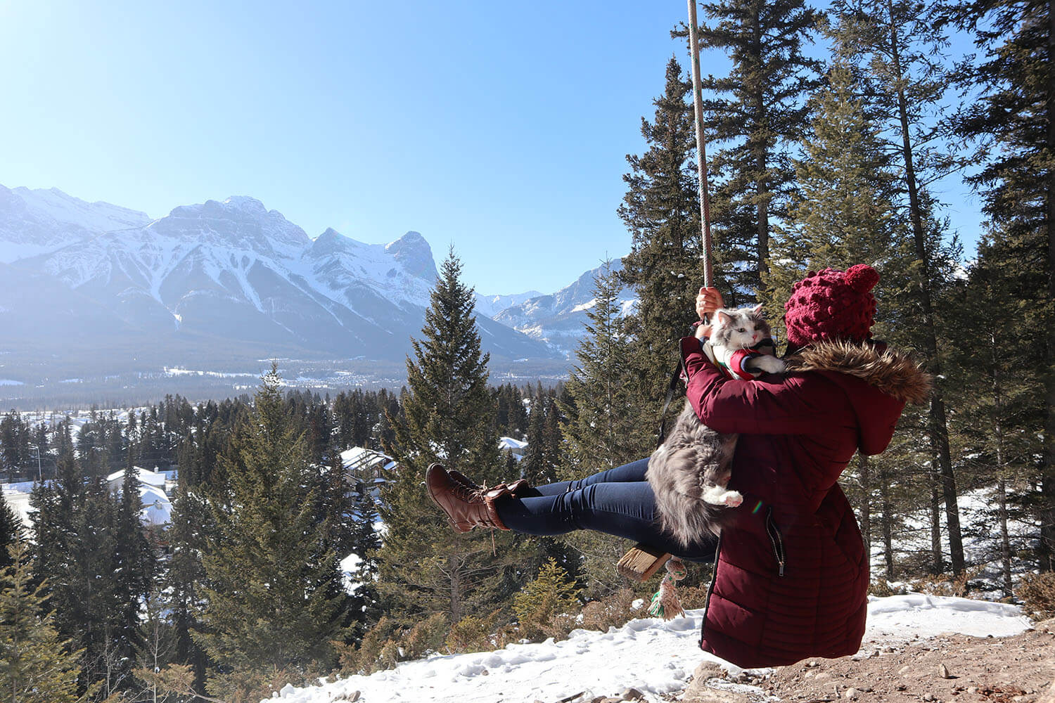 Travel - Canmore Swing Kananaskis Explore Alberta