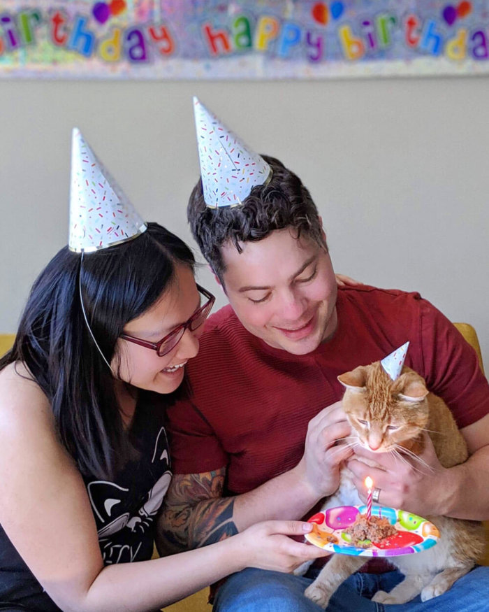 Dog Cat Birthday Party