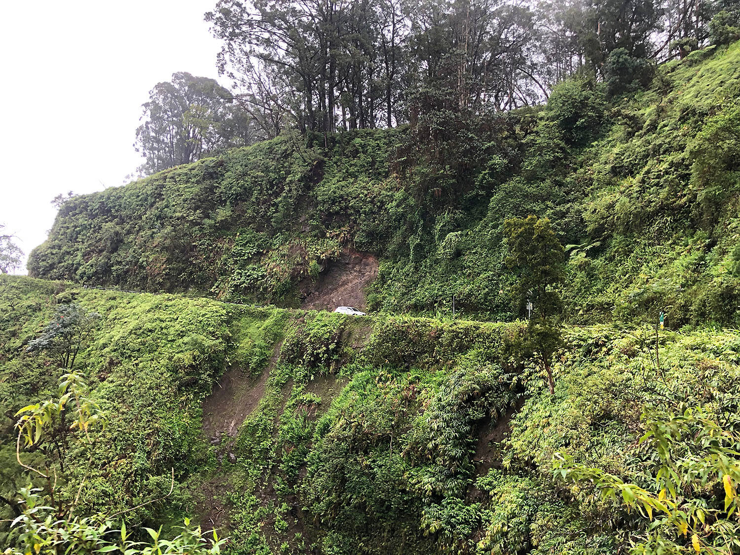 Tips for Taking The Road To Hana Maui Hawaii Travel Guide