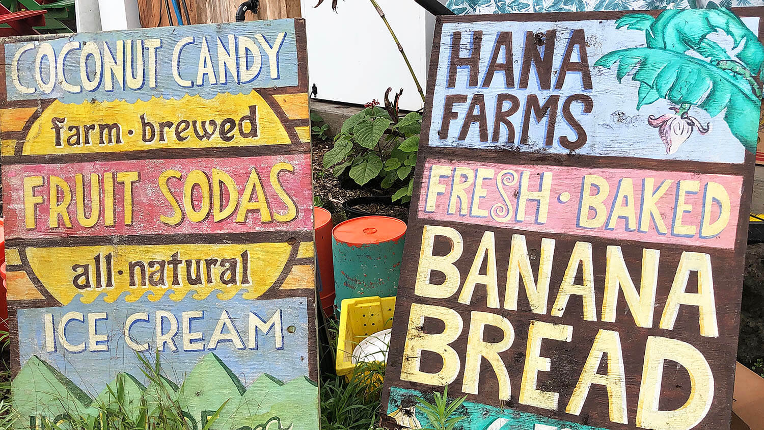 Tips for Taking The Road To Hana Maui Hawaii Travel Guide Hana Farms