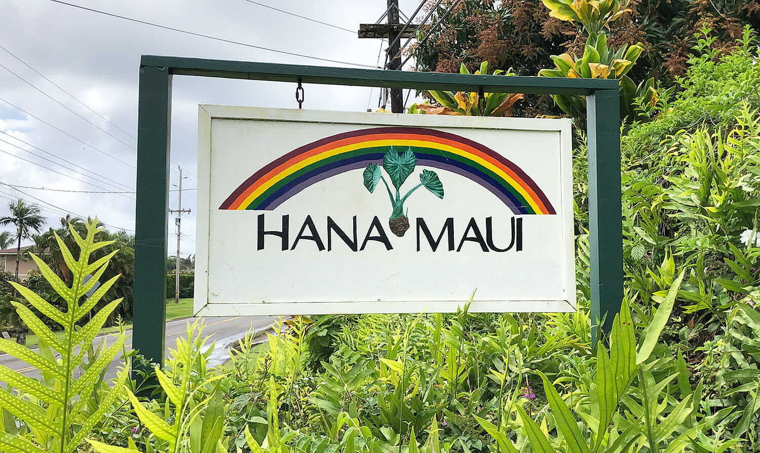 Tips for Taking The Road To Hana Maui Hawaii Travel Guide Hana Town
