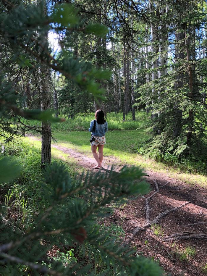 Travel Guide - Sundre Explore Alberta - Snake Hill Recreation Area