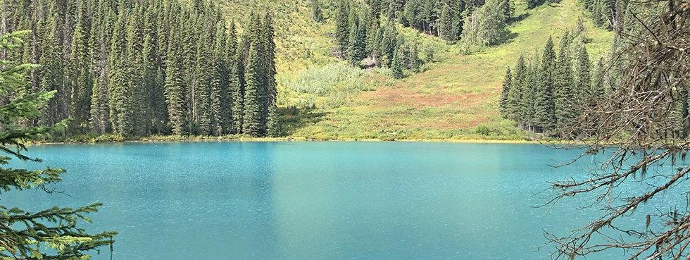 Emerald Lake - Yoho National Park - Explore BC - Explore Alberta Field