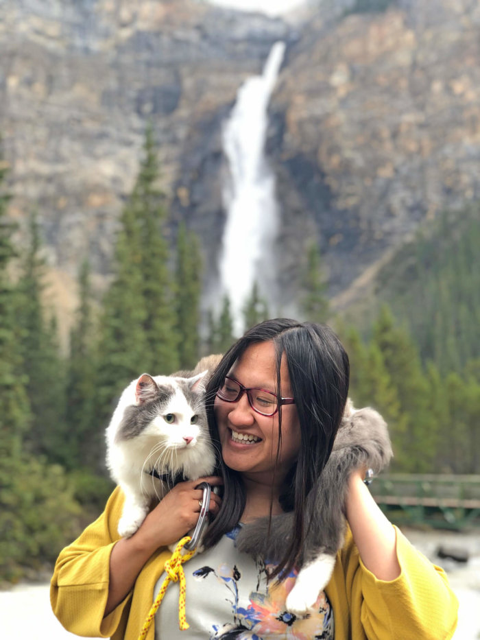 Gary the Adventure Cat - Takakkaw Falls - Yoho National Park - Explore BC - Explore Alberta