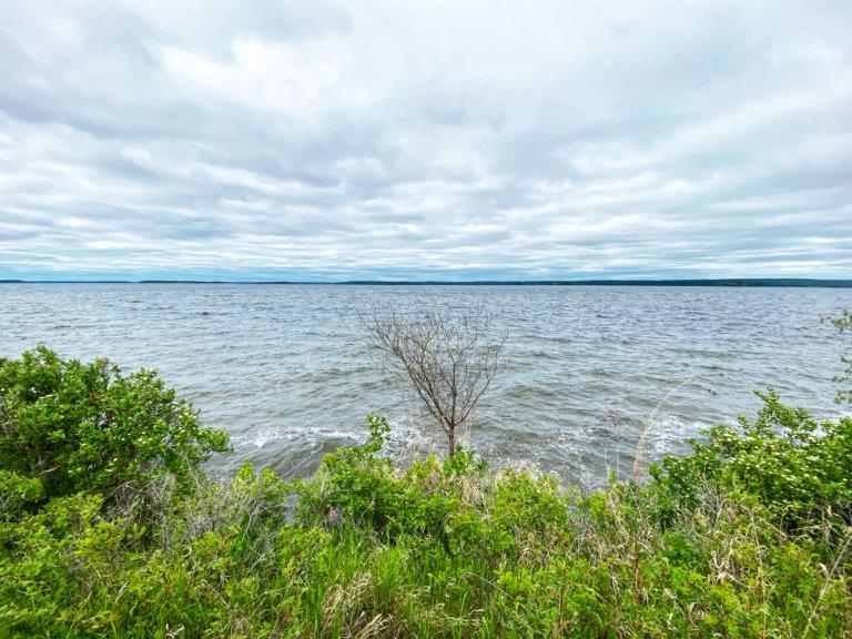 Lac La Biche County - Linda Hoang