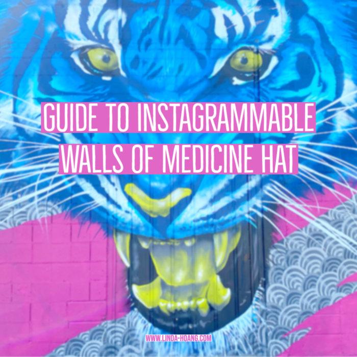 Guide to Instagrammable Walls of Medicine Hat - Explore Alberta - Travel - Murals - Art