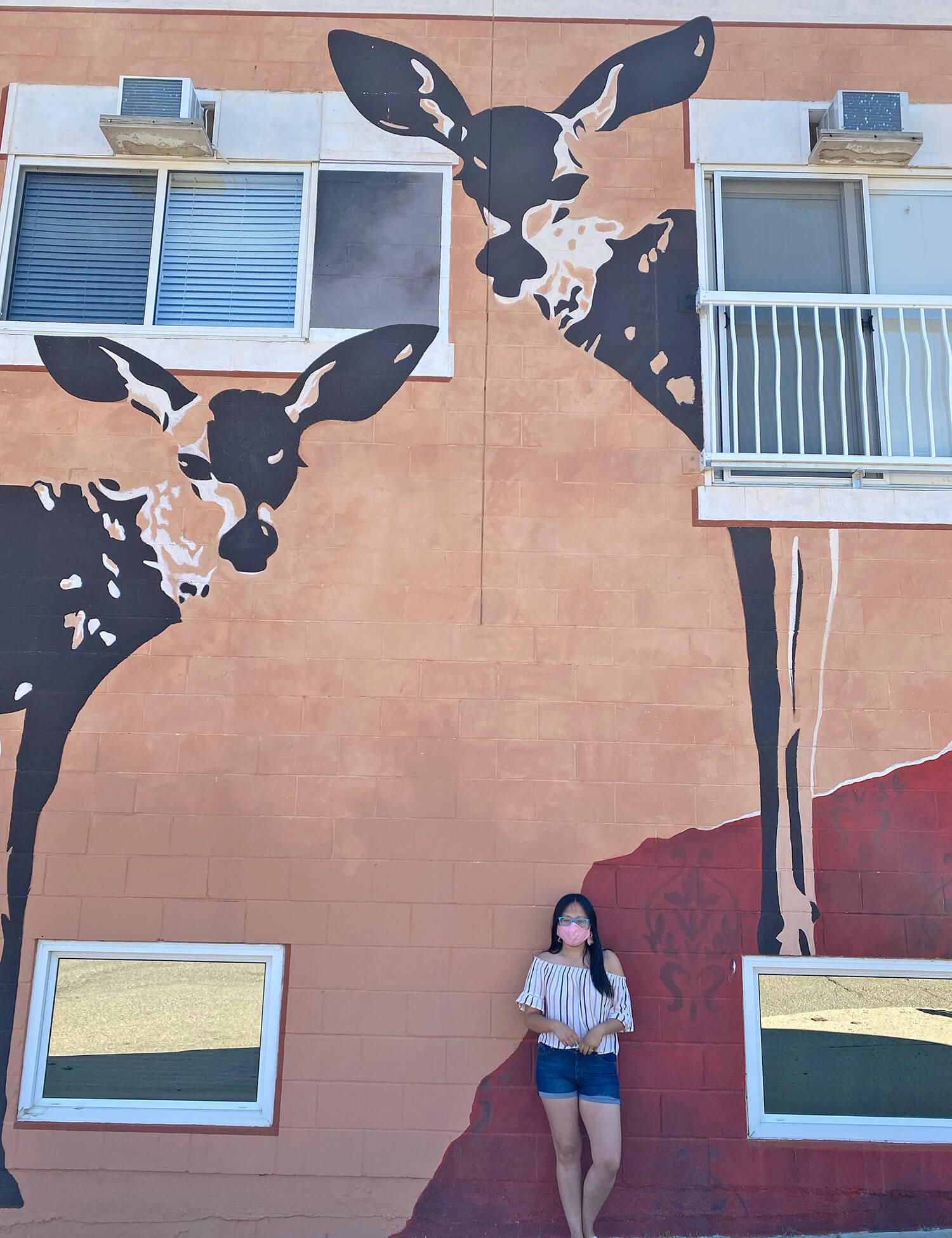 Instagrammable Walls of Medicine Hat - Wendy Struck - Deer in the City Art Mural