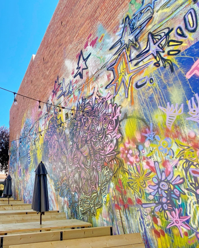 Instagrammable Walls of Medicine Hat - The Yard Doktoer - Art Mural