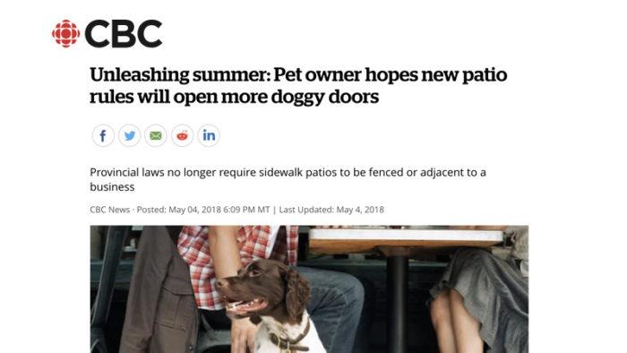 CBC Edmonton - Dog Friendly Patios