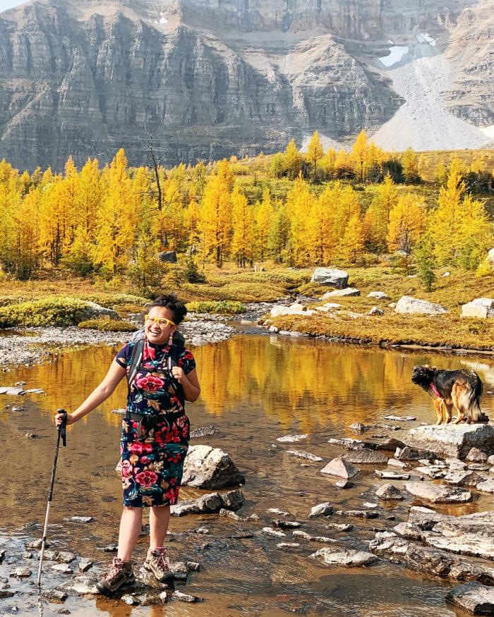 Explore Alberta - Travel - Banff National Park - Moraine Lake - Larch Valley Trail Minnestimma Lake Hike - Rocky Mountains - Larches - Ten Peaks