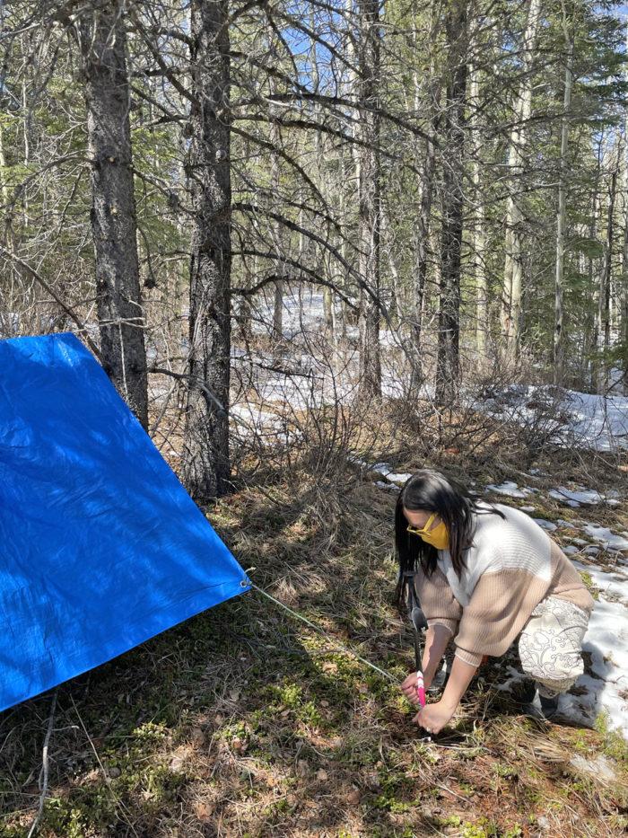 Explore Canmore Kananaskis - Travel Alberta - Pomeroy Kananaskis Lodge Kananaskis Outfitters Guided Survival Hike 4