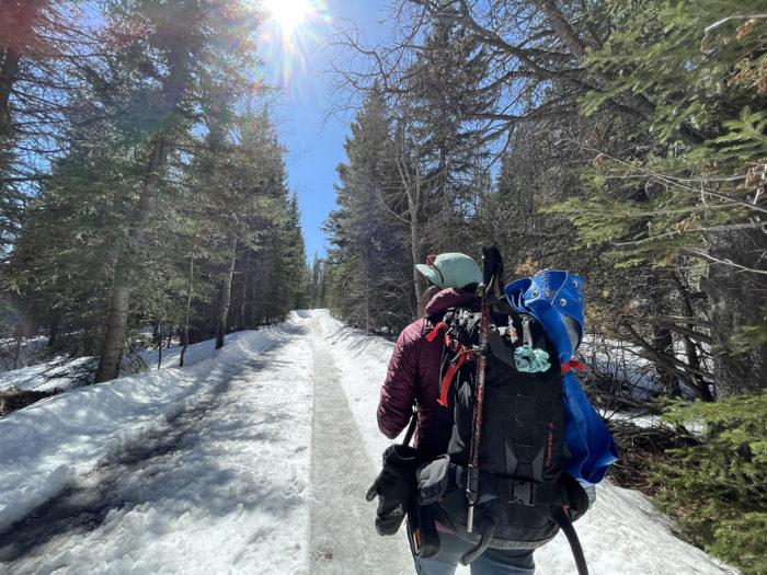 Explore Canmore Kananaskis - Travel Alberta - Pomeroy Kananaskis Lodge Kananaskis Outfitters Guided Survival Hike 9