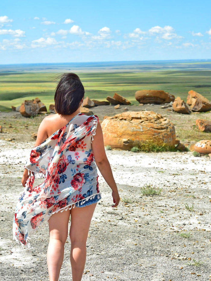 Explore Alberta - Travel - Medicine Hat - Southern Alberta - Downtown - Esplanade - Downtown - Red Rock Coulee Natural Area