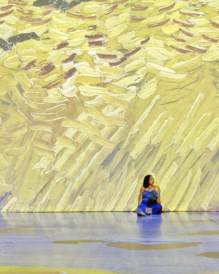 Explore Edmonton - Imagine Van Gogh EXPO Centre - Arts - Explore Alberta 1
