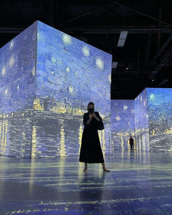 Explore Edmonton - Imagine Van Gogh EXPO Centre - Arts - Explore Alberta 4