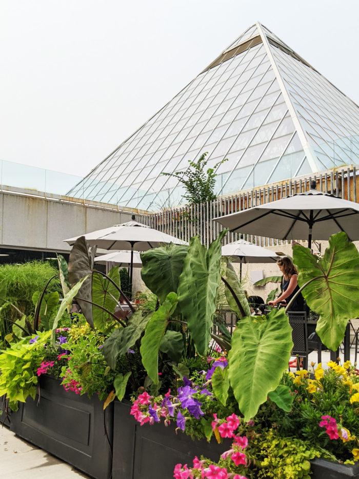 Alberta on the Plate - Explore Edmonton - Explore Alberta - Local Food - Culina Muttart